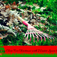Keep Your Family Closer for Christmas with Winter Lawn Care