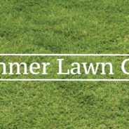 Preparing Your Yard for Summer
