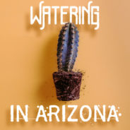 How to Water Your Lawn in Arizona