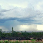 Arizona's Monsoon Season