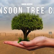 Monsoon Tree and Shrub Care